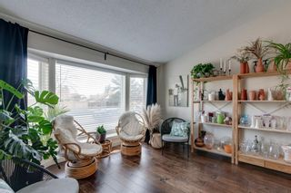 Photo 4: 192 Rivervalley Crescent SE in Calgary: Riverbend Detached for sale : MLS®# A1099130