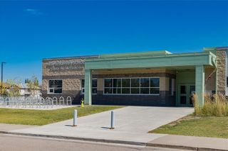 Photo 30: 101 NEW BRIGHTON Circle SE in Calgary: New Brighton Detached for sale : MLS®# C4264678