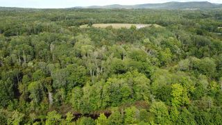 Photo 5: PARCEL A Barneys River Road in Avondale: 108-Rural Pictou County Vacant Land for sale (Northern Region)  : MLS®# 202016062