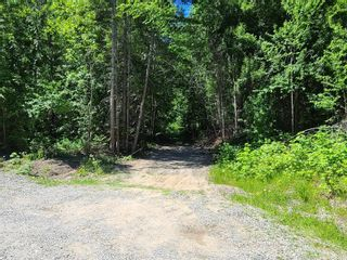 Photo 17: Lot 62 Terrace Place, in Blind Bay: Vacant Land for sale : MLS®# 10232785