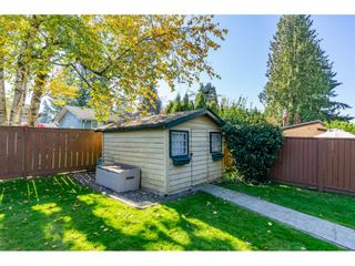 Photo 49: 32232 Pineview Avenue in Abbotsford: Abbotsford West House for sale