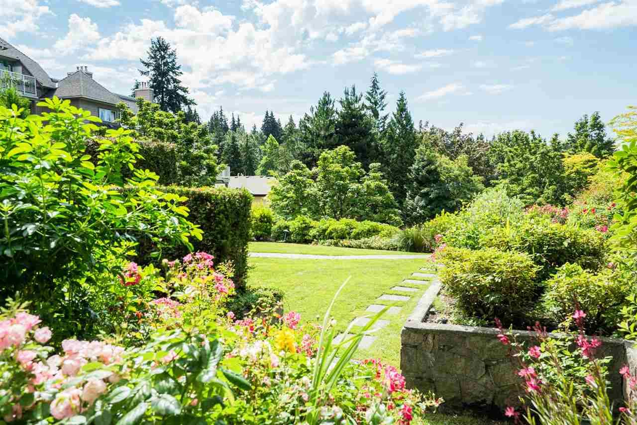 """Main Photo: 312 1050 BOWRON Court in North Vancouver: Roche Point Townhouse for sale in """"PARKWAY TERRACE"""" : MLS®# R2106597"""
