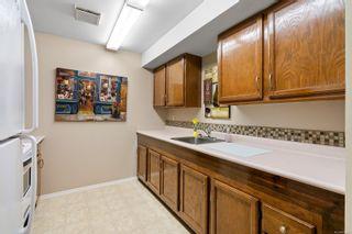 Photo 26: 4353 Northridge Cres in : SW Northridge House for sale (Saanich West)  : MLS®# 856532
