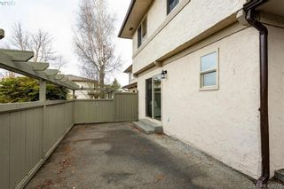 Photo 25: 19 4061 Larchwood Dr in VICTORIA: SE Lambrick Park Row/Townhouse for sale (Saanich East)  : MLS®# 808408