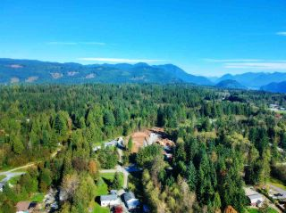 Photo 11: 30255 BRACKLEY Avenue in Mission: Stave Falls Land for sale : MLS®# R2527114