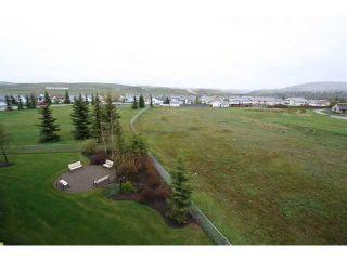 Photo 16: 314 72 QUIGLEY Drive: Cochrane Condo for sale : MLS®# C3477062