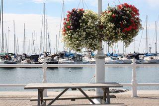 Photo 29: 102 Maria's Quay in Cobourg: Condo for sale : MLS®# 230864