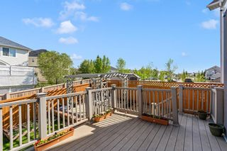 Photo 37: 40 Coral Reef Bay NE in Calgary: Coral Springs Detached for sale : MLS®# A1118339