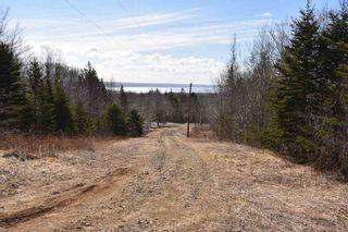Photo 12: 24 SPRUCE Lane in Roxville: 401-Digby County Residential for sale (Annapolis Valley)  : MLS®# 202105687