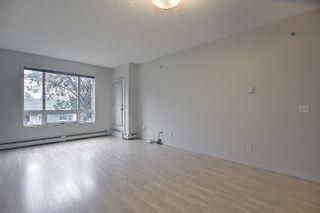 Photo 7: 321 6315 135 Avenue in Edmonton: Zone 02 Condo for sale : MLS®# E4255490