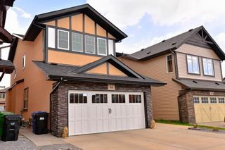 Main Photo: 44 Skyview Shores Link NE in Calgary: Skyview Ranch Detached for sale : MLS®# A1113445