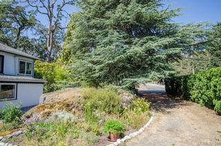 Photo 45: 4035 Saanich Rd in VICTORIA: SE High Quadra House for sale (Saanich East)  : MLS®# 793152