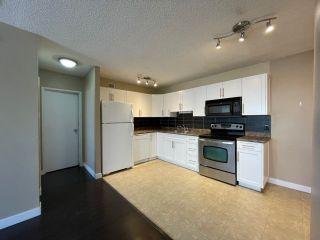 Photo 5: 207 9710 105 Street in Edmonton: Zone 12 Condo for sale : MLS®# E4264531
