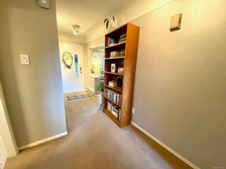 Photo 23: 420 Richmond Ave in : Vi Fairfield East House for sale (Victoria)  : MLS®# 874416