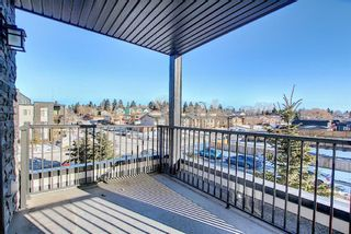 Photo 27: 3202 1317 27 Street SE in Calgary: Albert Park/Radisson Heights Apartment for sale : MLS®# A1063764