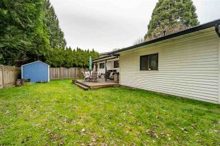 Photo 22: 20772 52 Avenue in Langley: Langley City House for sale : MLS®# R2582073