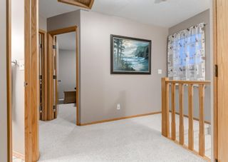 Photo 18: 103 DOHERTY Close: Red Deer Detached for sale : MLS®# A1147835