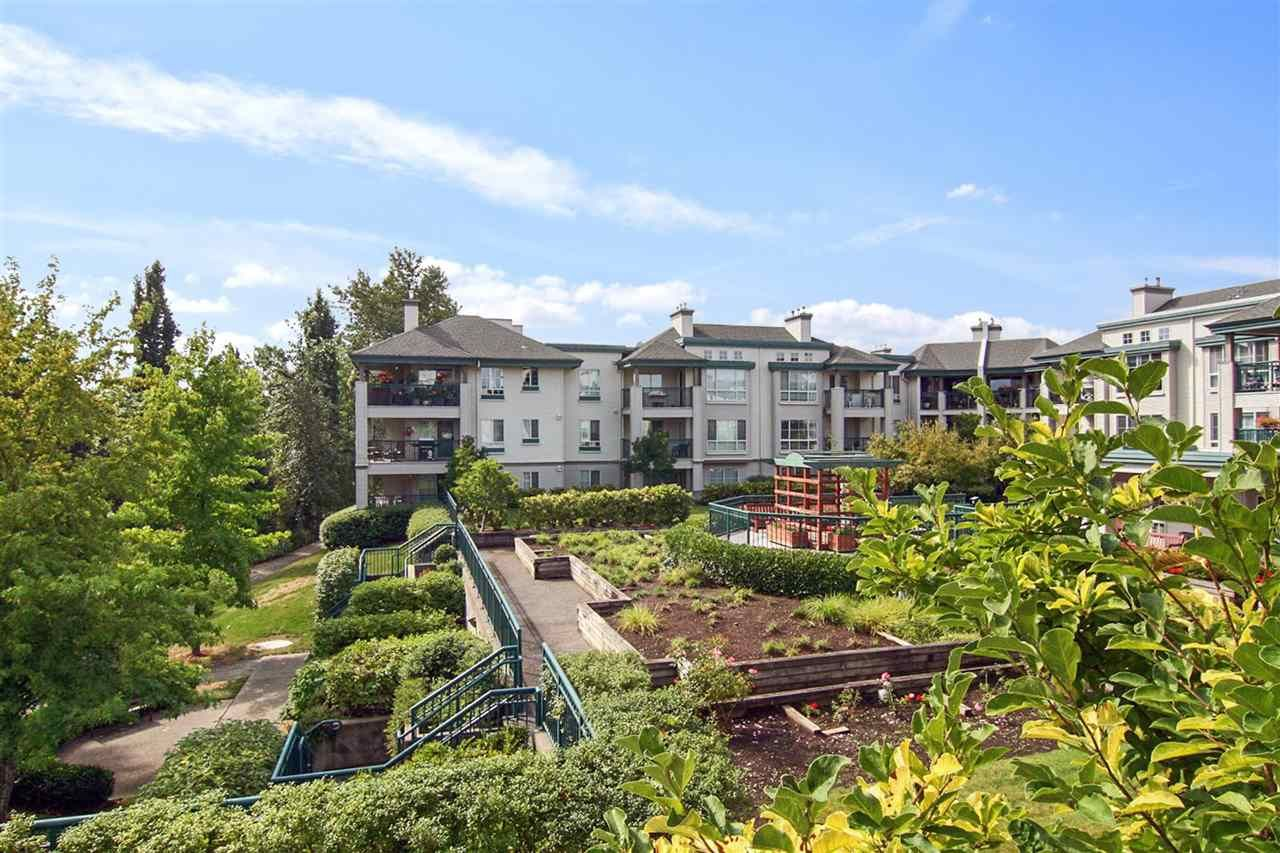 """Main Photo: 302 19528 FRASER Highway in Langley: Cloverdale BC Condo for sale in """"Fairmont"""" (Cloverdale)  : MLS®# R2554897"""