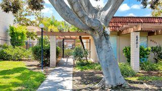 Photo 24: DEL CERRO Condo for sale : 2 bedrooms : 6775 Alvarado Rd #4 in San Diego