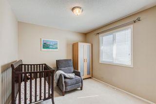 Photo 19: 137 Saddletree Close NE in Calgary: Saddle Ridge Detached for sale : MLS®# A1091689
