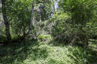 Photo 14: 1752 Little River Rd in : CV Comox Peninsula Land for sale (Comox Valley)  : MLS®# 878788