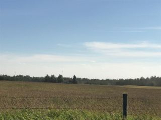 Photo 15: 57525 Rg Rd 214: Rural Sturgeon County Rural Land/Vacant Lot for sale : MLS®# E4237624