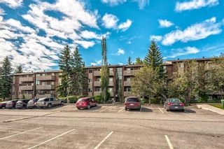 Photo 31: 432 11620 Elbow Drive SW in Calgary: Canyon Meadows Apartment for sale : MLS®# A1119842