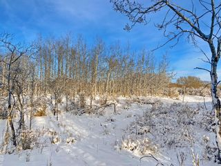 Photo 17: 31 Grove Lane in Rural Rocky View County: Rural Rocky View MD Residential Land for sale : MLS®# A1097684