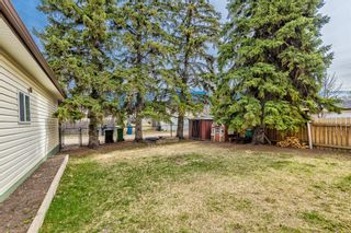 Photo 37: 22 Chancellor Way NW in Calgary: Cambrian Heights Detached for sale : MLS®# A1100498