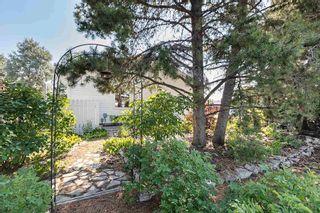 Photo 37: 14411 79 Street in Edmonton: Zone 02 House for sale : MLS®# E4258013