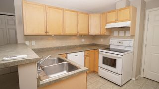 Photo 8: 46 1179 SUMMERSIDE Drive in Edmonton: Zone 53 Carriage for sale : MLS®# E4266518