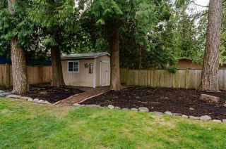"""Photo 31: 3891 205B Street in Langley: Brookswood Langley House for sale in """"BROOKSWOOD"""" : MLS®# R2545595"""