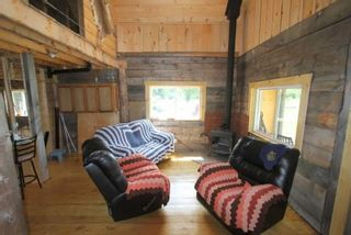 Photo 4: Lt 12 N Doyle Road in Kawartha Lakes: Rural Bexley House (1 1/2 Storey) for sale : MLS®# X5357700