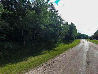 Photo 18: Pinebrook Block 1 Lot 2: Rural Thorhild County Rural Land/Vacant Lot for sale : MLS®# E4171871