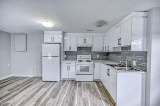 Photo 21: 39 Aberdare Road NE in Calgary: Abbeydale Detached for sale : MLS®# A1127004