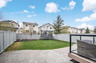 Photo 31: 168 Cougar Ridge Circle SW in Calgary: Cougar Ridge Detached for sale : MLS®# A1109438