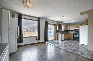 Photo 13: 23 Applecrest Court SE in Calgary: Applewood Park Detached for sale : MLS®# A1079523