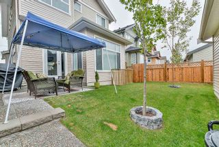 Photo 3: 10516 JACKSON Road in Maple Ridge: Albion House for sale : MLS®# R2106558