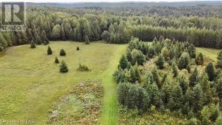 Photo 28: 300 HAMILTON LAKE Road in South River: Vacant Land for sale : MLS®# 40159931
