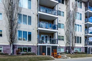Photo 31: 204 237 YOUVILLE Drive E in Edmonton: Zone 29 Condo for sale : MLS®# E4237985