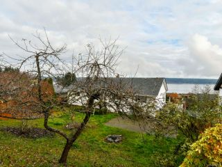 Photo 58: 156 S Murphy St in CAMPBELL RIVER: CR Campbell River Central House for sale (Campbell River)  : MLS®# 828967