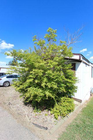 Photo 38: 61 3350 NE 10th Avenue in Salmon Arm: NE Salmon Arm House for sale (Shuswap)  : MLS®# 10220213