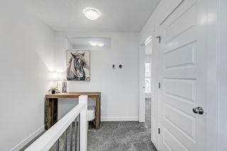 Photo 24: 17496 77 Street in Edmonton: Zone 28 House for sale : MLS®# E4248254