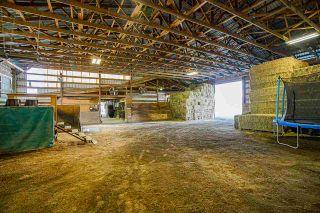 Photo 24: 1280 POWERHOUSE Road in Abbotsford: Sumas Prairie House for sale : MLS®# R2565055