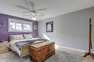 Photo 15: 3203 12 Avenue SE in Calgary: Albert Park/Radisson Heights Detached for sale : MLS®# A1080095