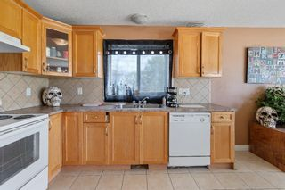 Photo 23: 109 Sierra Place: Olds Detached for sale : MLS®# A1113828