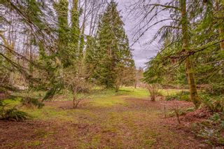 Photo 38: 4365 Munster Rd in : CV Courtenay West House for sale (Comox Valley)  : MLS®# 872010