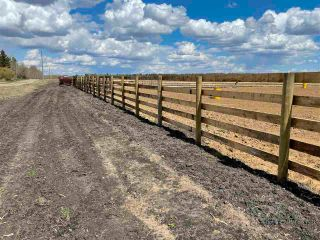 Photo 29: Twp 604 Rg Rd 244: Rural Westlock County Rural Land/Vacant Lot for sale : MLS®# E4223747