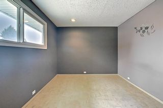 Photo 21: 1936 Matheson Drive NE in Calgary: Mayland Heights Detached for sale : MLS®# A1130969