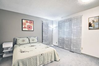 Photo 26: 144 Martinwood Court NE in Calgary: Martindale Detached for sale : MLS®# A1126396